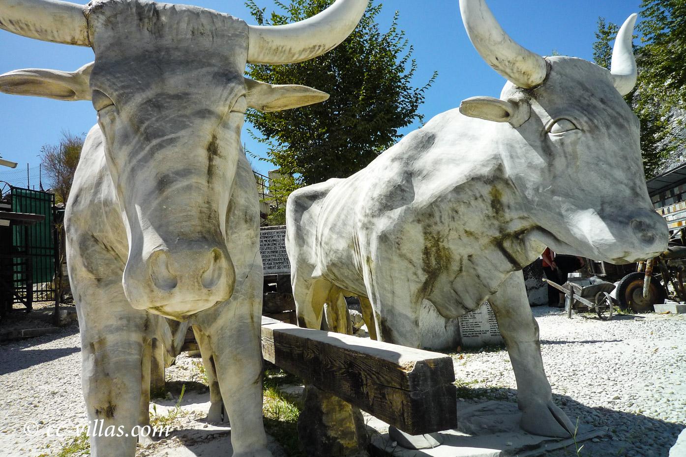 Marmorbrüche Carrara - Ochsengespann - Skulptur Museum Walter Danesi