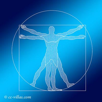 Leonardo da Vinci Museum - Vitruvianischer Mensch