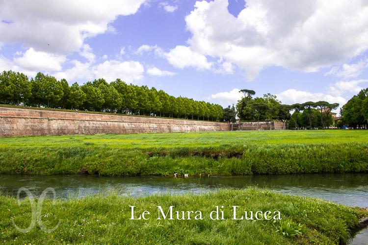 Lucca Stadtmauer - gegenüber des Parkplatzes Carducci