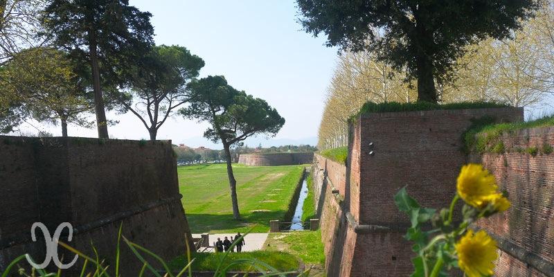 Lucca Stadtmauer - kein Mauerblümchen sondern bekannt in aller Welt