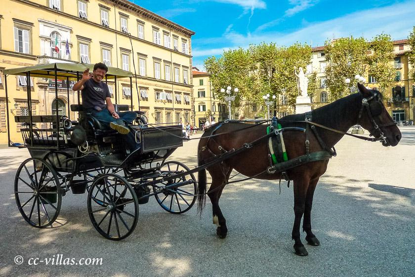 Lucca Toskana - Droschke auf der Piazza Napoleone