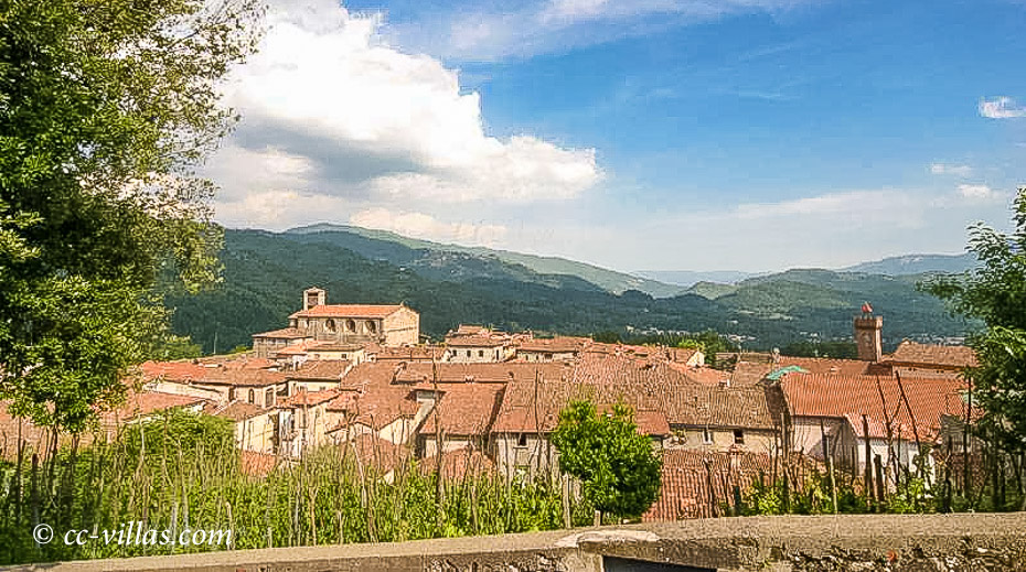 Montecarlo close to Lucca - medieval town with its fortress
