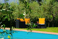 Small Tuscany Cottage with private pool - from the olive grow towar