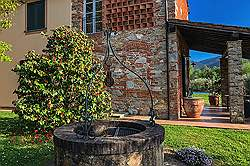 Small Tuscany Cottage with private pool - in the olive groe