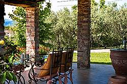 Small Tuscany Cottage with private pool - the well - with herbs pla